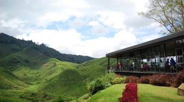 برنامج اقتصادي عائلي مع مرتفعات كاميرون لمده 8 ليالي و9 ايام - ماليزيا - عروض ماليزيا - فنادق ماليزيا