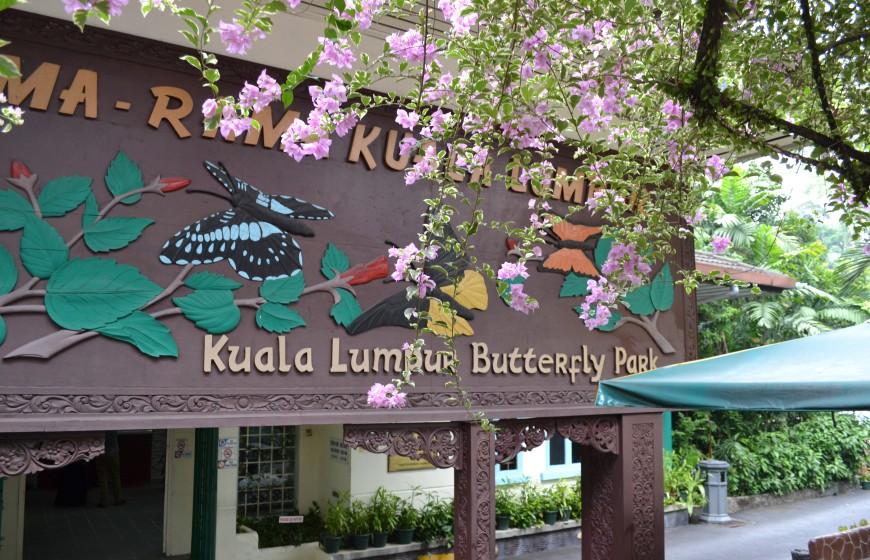حديقة الفراشات في مدينة كولالمبور ماليزيا - معلومات ماليزيا - سياحة ماليزيا - اماكن سياحية في ماليزيا
