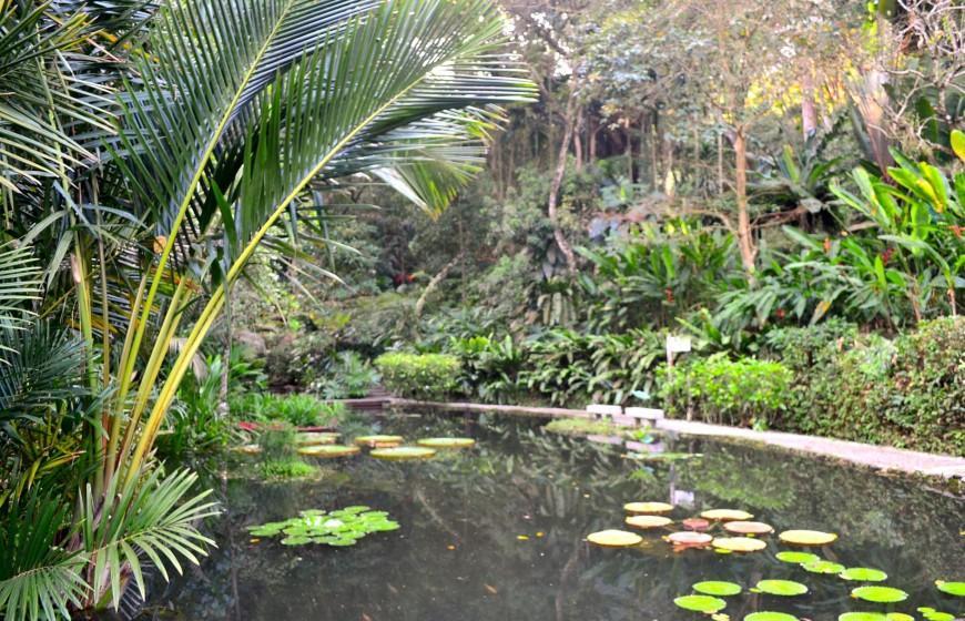 حديقة التوابل - معلومات ماليزيا - سياحة ماليزيا - اماكن سياحية في ماليزيا