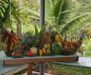 حديقة الفواكه في جزيرة بينانج ماليزيا