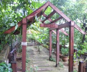 محمية البوكت ناناس كوالالمبور ماليزيا